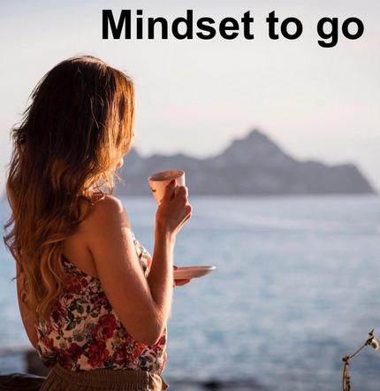 Tara Fischer Featured in Mindset To Go | Lavii®